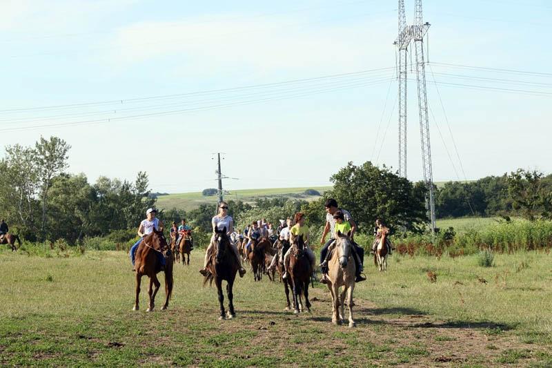 экскурсия Фадеево конные прогулки